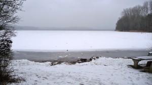 Ostseite Kellersee bei Sielbek