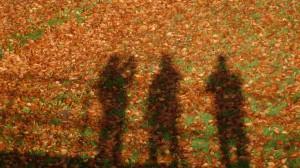 3 Männer im Laub