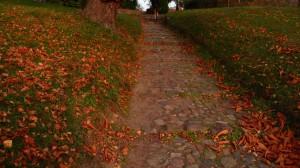 E1 führt über den Kirchhof