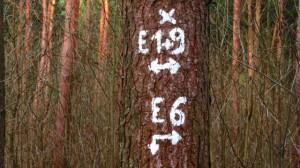 Tchüß E6
