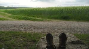 Kurz vor Steinbeck (Buchholz) noch mal Füße hoch.