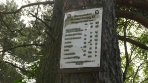 E1 Marker mit Kilometerangaben noch 60km bis Soltau. Heute nicht zu schaffen ;-)