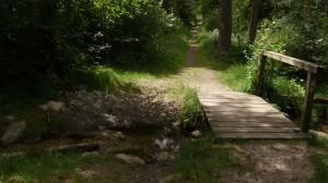 Brücke über den Büsenbach. Tal links.