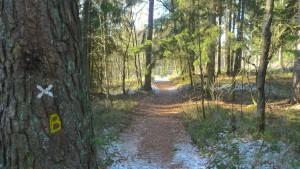 Toller Wanderweg vom Luhegrund zur Luhequelle