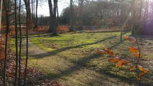 Breidingsgarten