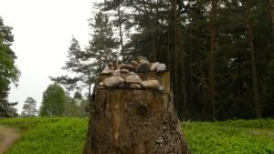 Steine auf Baumstumpf