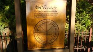Vogeluhr in Otternhagen