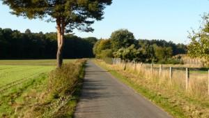 Der Weg hinter Otternhagen