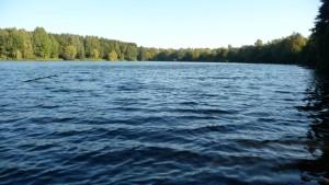 Kiesteich Bordenau