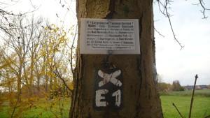 E1 Marker