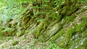 Grüner Fels